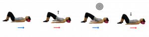 bridging-pilates-posture